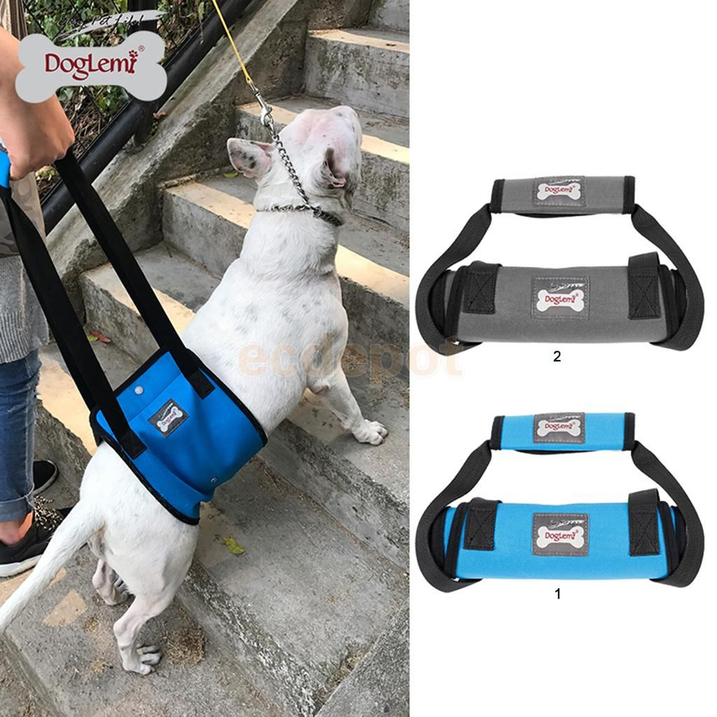 petsola Dog Lift Support Rehabilitation Harness Mobility Sling Canines Aid for Disable, Injured, Elderly Pet