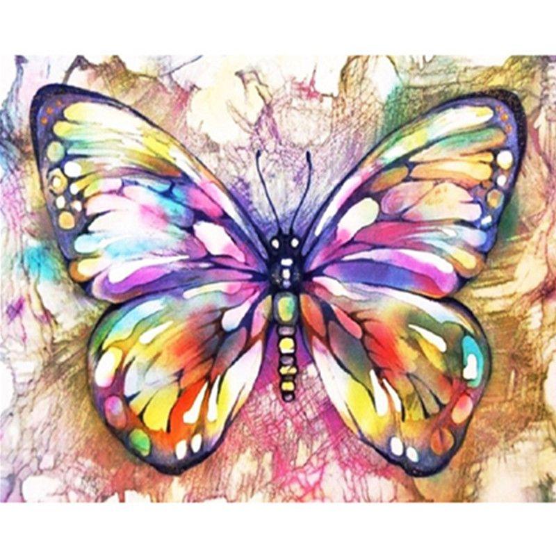 Peinture par numéros bricolage livraison directe 40x50 50x65cm beau coloré papillon Animal toile mariage décoration Art photo cadeau