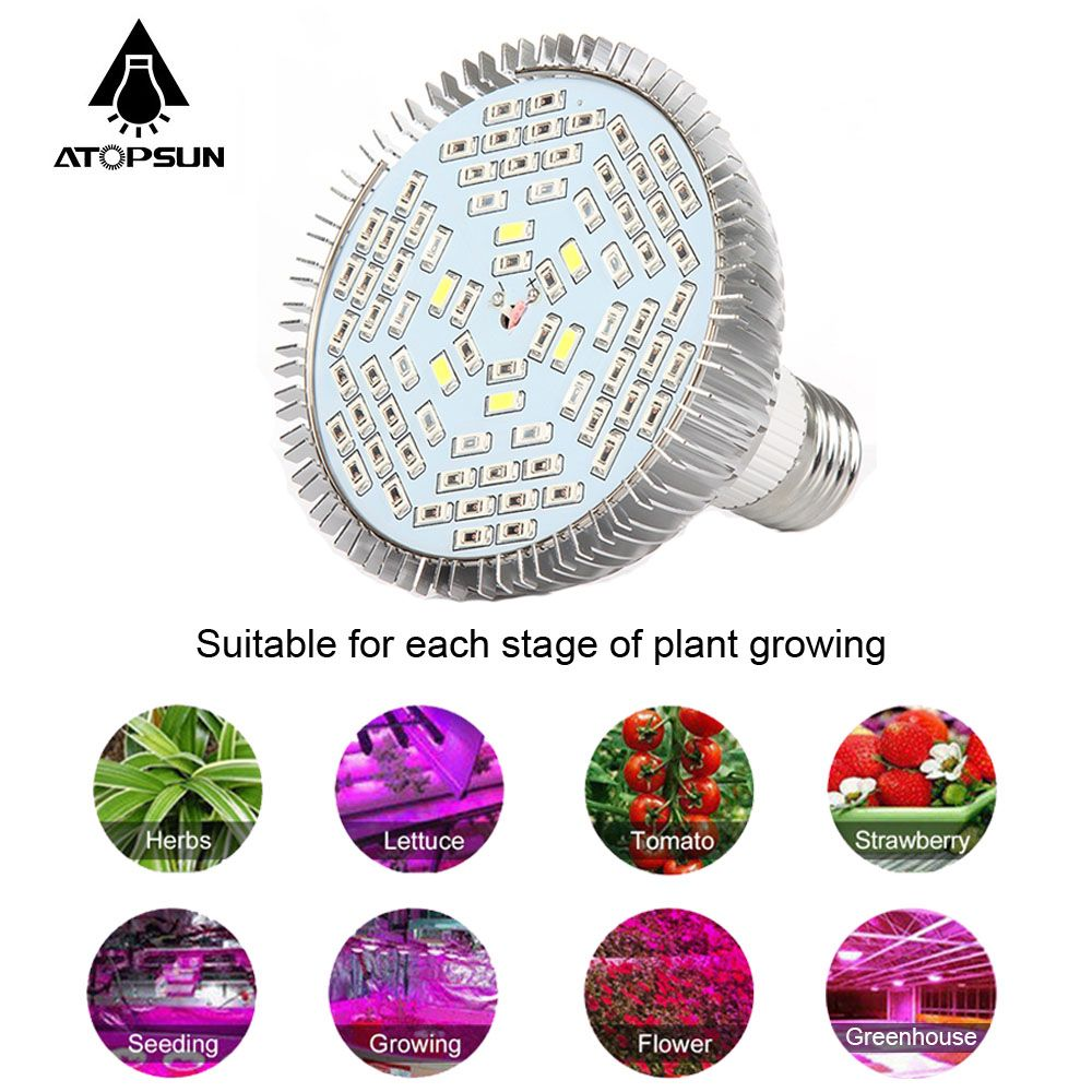 6 stücke Volle Geführte spektrum Wachsen Licht E27 30 Watt 50 Watt 80 Watt Led anlage Lampe für Indoor-blume Gemüse Pflanze Hydrokultur-system Geführt Zelt beleuchtung Box35