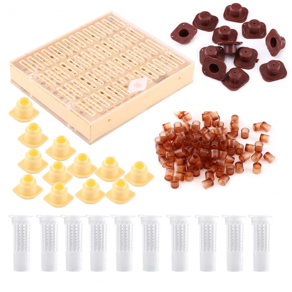 Beekeeping Equipment Set 110Pcs Cell Cups+Queen Rearing Box+12 Pcs Cell Bar Blocks Caps+10Pcs Hair Roller Cages Dropshipping