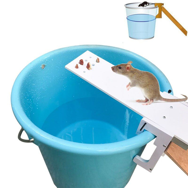 Home Garden Pest Controller Rat Trap Quick Kill Seesaw Mouse Catcher Bait MYDING