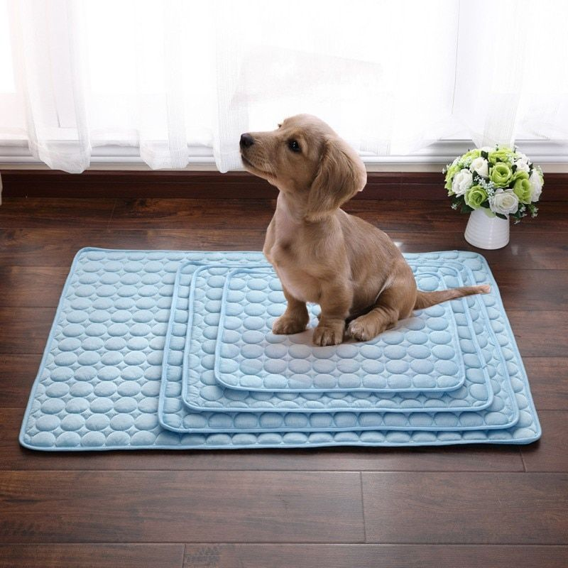 Animaux de compagnie chien été refroidissement tapis couverture glace chats lit tapis pour chien canapé Portable Tour Camping Yoga sommeil Massage accessoires pour animaux de compagnie