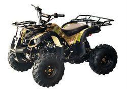 Small ATV 125cc Beach Buggy