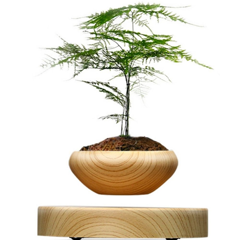 Magnetic Suspended Potted Plant Wood Grain Round LED Levitating Indoor Air Plant Pot for Home Office Gardening Decoration