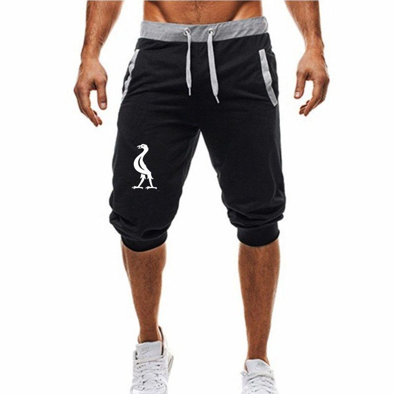 2019 Nouveau Fitness jogging court décontracté vêtements d'entraînement homme 3XL short d'été nouvelle mode homme décontracté homme genou short long