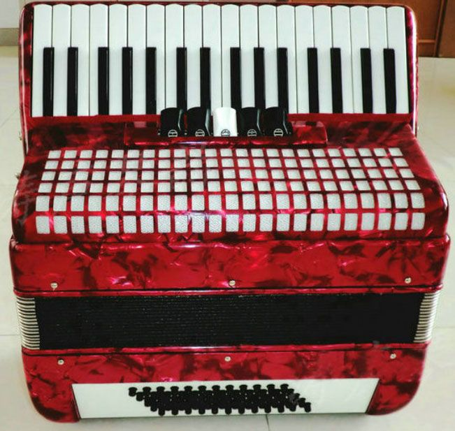 Brand New 60 bass 34 key 5 swift accordion with bag and two shoulder strap piano accordion