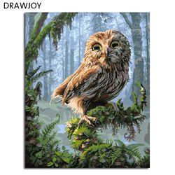DRAWJOY картины в рамке живопись по номерам Сова DIY цифровая картина маслом на холсте украшение дома стены искусства GX8346 40*50 см
