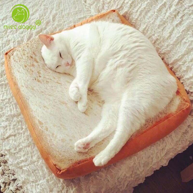MISS DOGGY drôle 3D chat Toast lit pain chat chien lit tapis mignon petit chien lits chaud coussin avec amovible Designer housse lavable