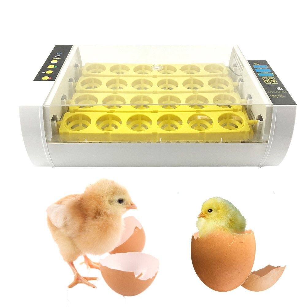 2017 New 24 Small Size Digital Clear Egg Automatic Incubator Digital Temperature Geese Poultry Incubator Quail Pigeons Parrot