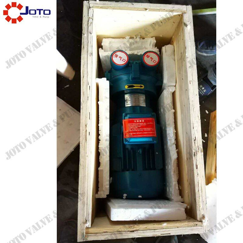 China Made 2BV2070 380v 50hz Cast Iron Liquid Ring Vacuum Pump with stainless steel impeller