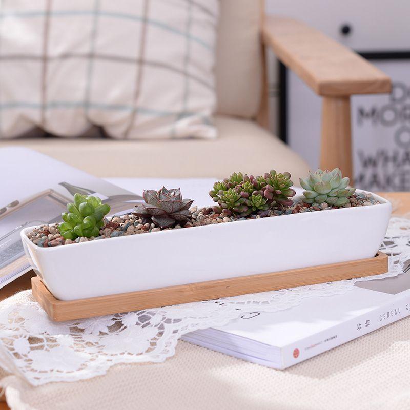 1 ensemble minimaliste géométrie blanc en céramique succulente plante Pot bonsaï jardinière porcelaine Pot de fleur décor à la maison (1 Pot + 1 support)