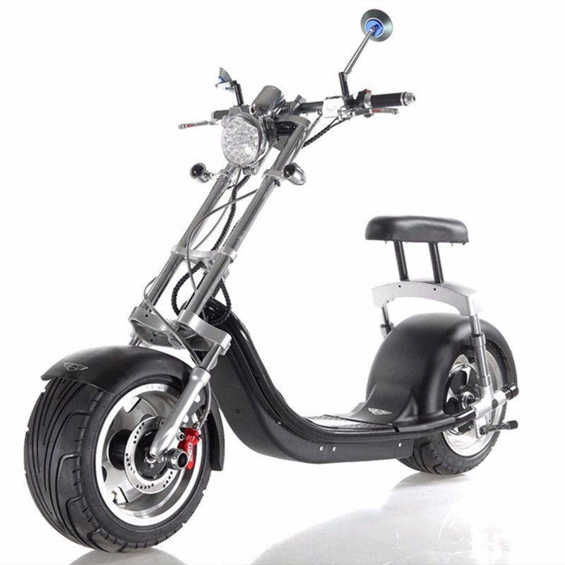 EXPORTSAFE BATTERY EcoRider Two Seat Harley Electric Scooter Motor City CoCo 1200w Electric Scooter