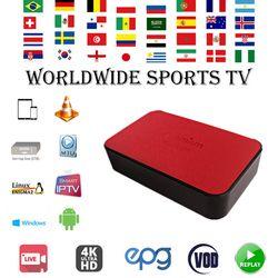 GOTiT IPTV Abonnement pour Italie Nordique Néerlandais Israël Portugal Adulte Belgique Français Arabe IPTV M3U pour Android Smart TV Enigma2