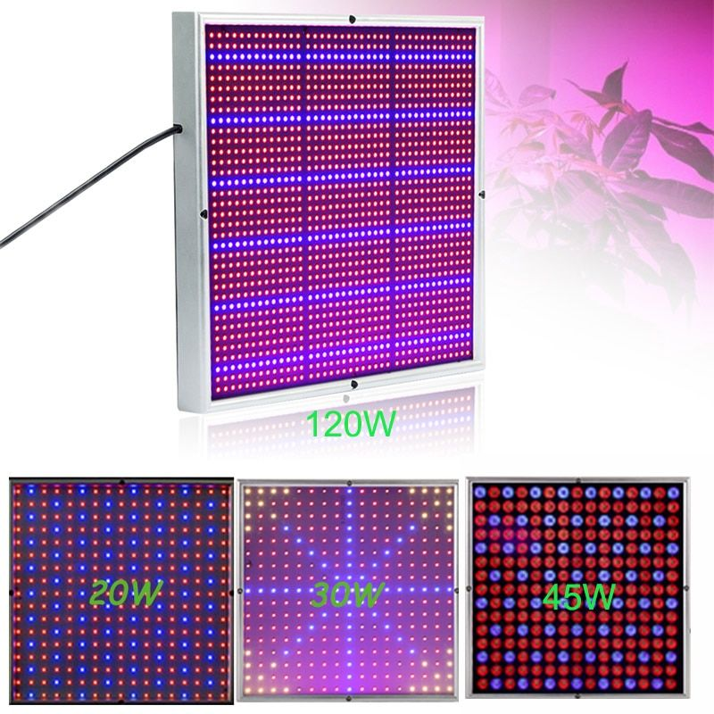 20W/30W/45W/120W Led Grow Light Red+Blue SMD2835 LED Plant Grow Lamps Light For Flowering Plant And Hydroponics System