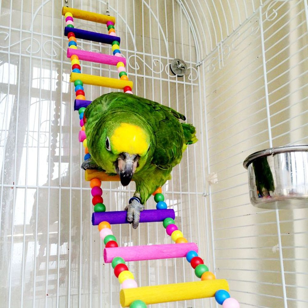 Hot Sale New Arrival Bird Parrot Colorful climbing ladder toy parrot swing toys parrot supplies with good quality