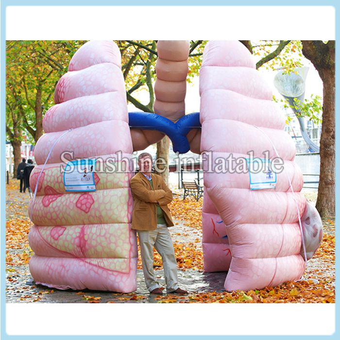 Free shipping customized 10ft giant inflatable lung inflatable organ best for advertising