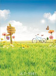 Background for Photos Spring Grassland Flowers Bike Computer Printed Vinyl Photography Backdrop Photocall for Weddings Children