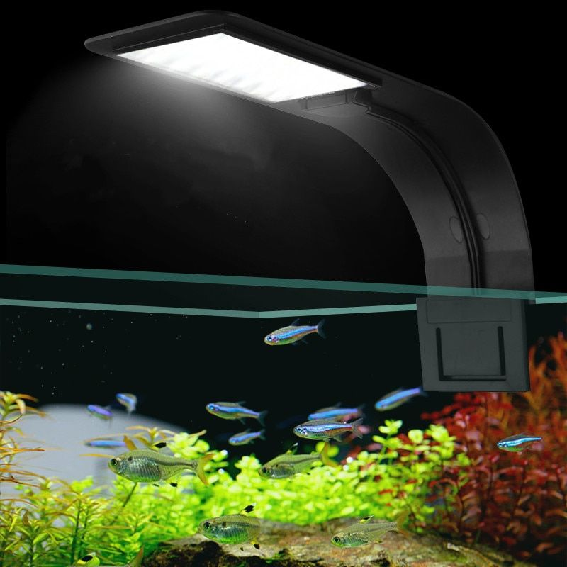 Les plantes de lumières LED d'aquarium à clipser Super minces de LED élèvent la lampe imperméable de lampes d'eau douce aquatiques de la lumière 5 W/10 W/15 W pour des réservoirs de poissons