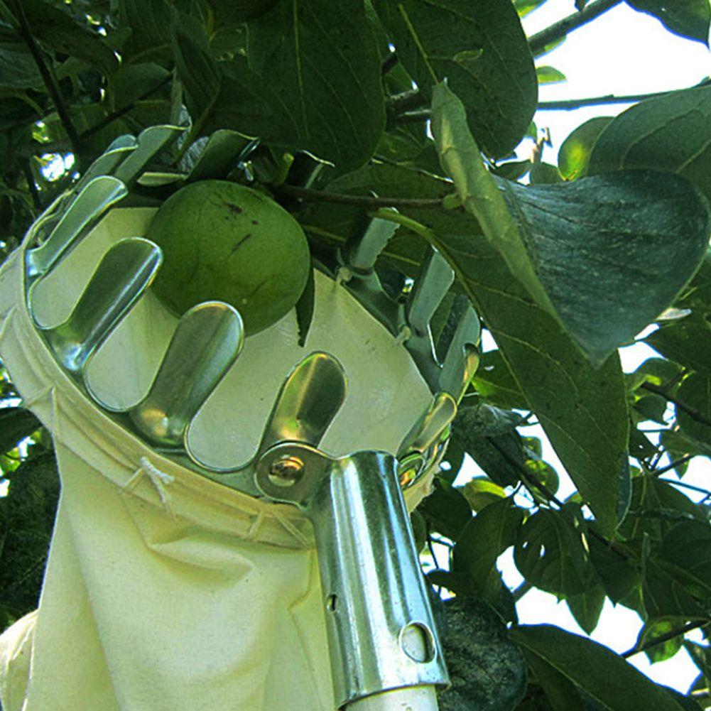 Garden Tools Convenient Horticultural Fruit Picker Gardening Apple Peach Picking Tools
