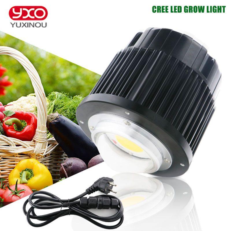 CREE CXB3590 100 W COB CITIZEN LED Wachsen Licht Gesamte Spektrum 12000LM = HPS 200 W Wachsen Lampe für Hydrokultur pflanzen Wachstum lichter