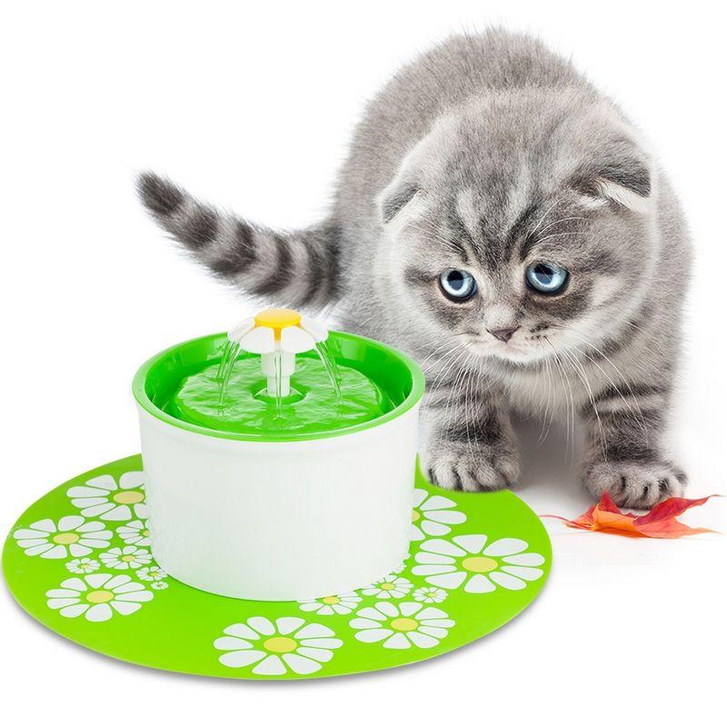 110 220 v Électrique Chat Pet Feeder Eau Fontaine 1.6L Automatique Chien Chat Potable Bol Animal Boire Chat Distributeur D'eau bleu Vert