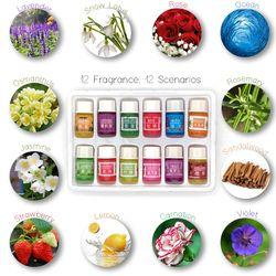 12 бутылок 3 мл спа завод эфирные масла с ароматические масло для ароматерапии бытовой ежедневные поставки выздоровел аромат дома Air care