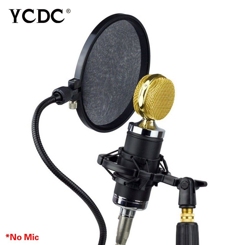 AE Microphone Pop Filtre Chant Pare-Brise Bouclier Podcast Double Double Couche Masque Anti Mic Métal Studio Pop Filtre
