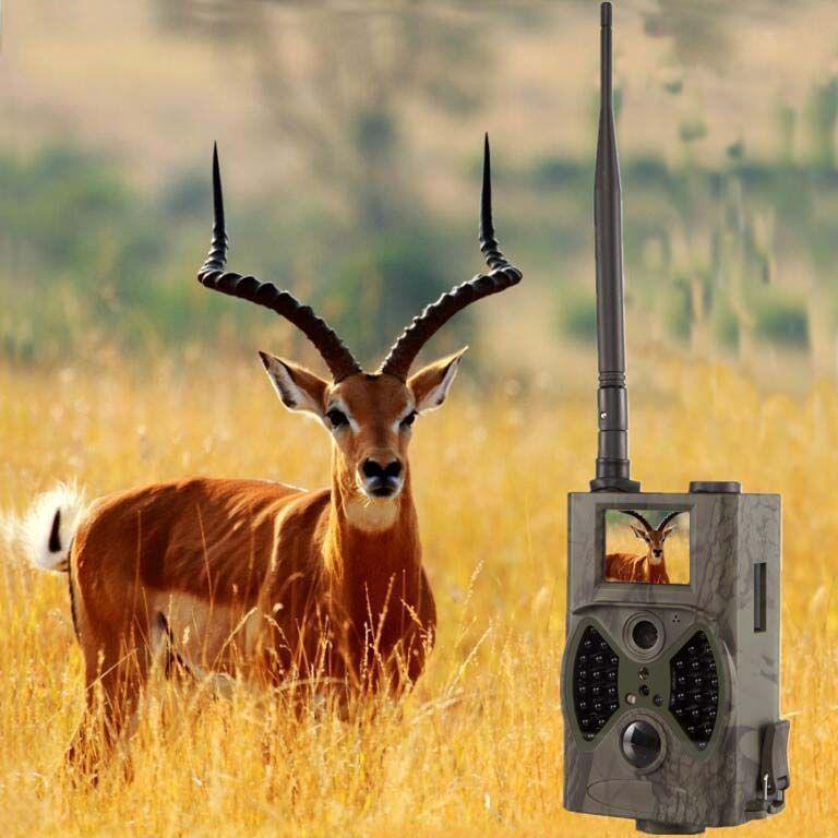 12MP 1080 P GSM Trail Kamera Mit High Gain Antenne Outdoor Jagd Spiel Wilden Kameras GPRS MMS