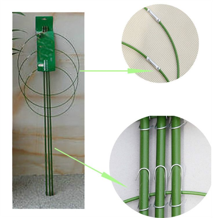 Heavy Duty Tomato and Plant Support Cage Plant-Staking System(60 cm)