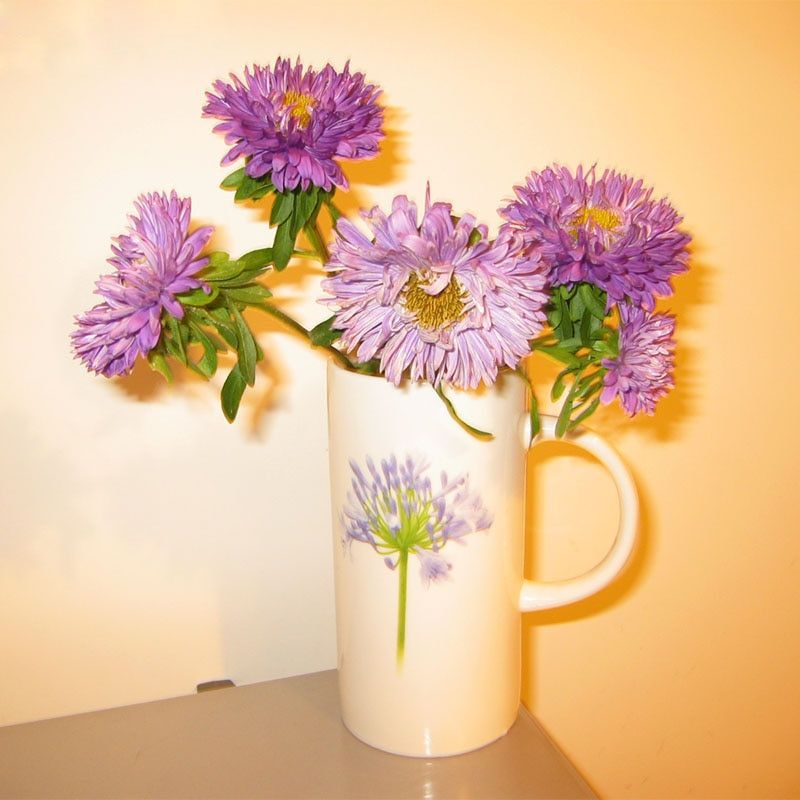 Hot Selling Rare Light Purple Callistephus Chinensis Flower Seeds Balcony Potted Bonsai Plant Flower Seeds Aster Seeds 120PCS