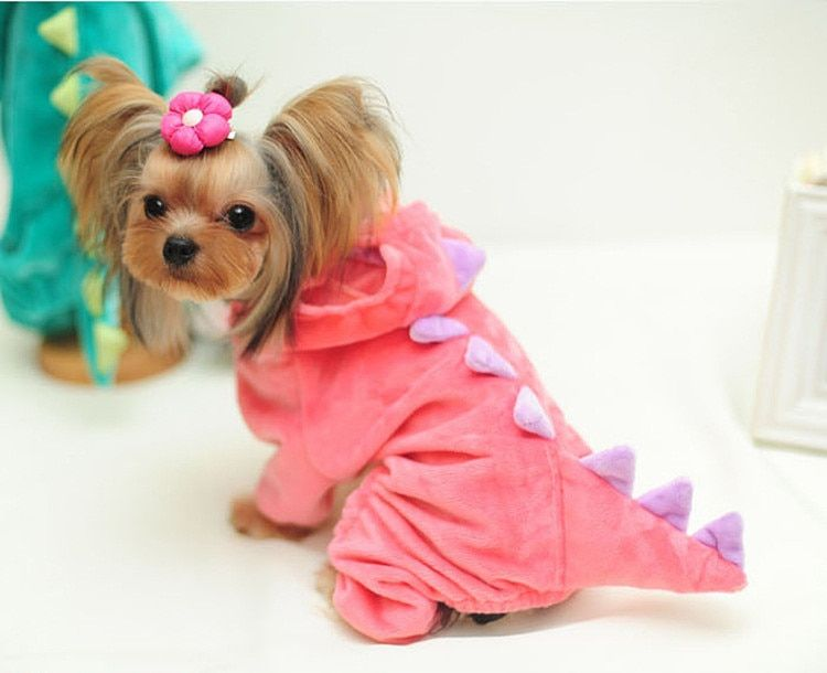 Vêtements de chien drôle manteau de chiot Dragon pour animaux de compagnie vêtements de dinosaure à capuche en peluche vêtements en Jersey Chihuahua pour petits chiens Costume 30