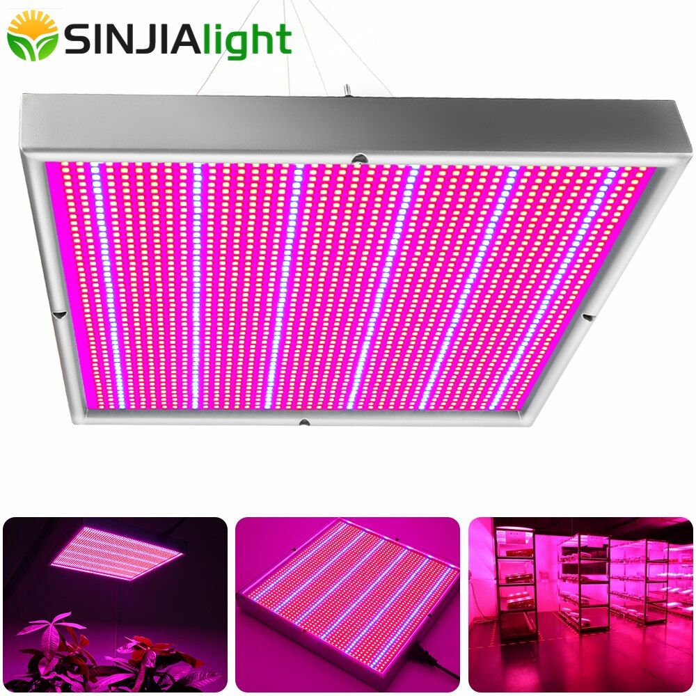 200W LED Grow Panel Plant Growth Lamp Red+Blue Phytolamp for Flower Lighting Indoor Plants Hydroponics Vegs grow tent greenhouse