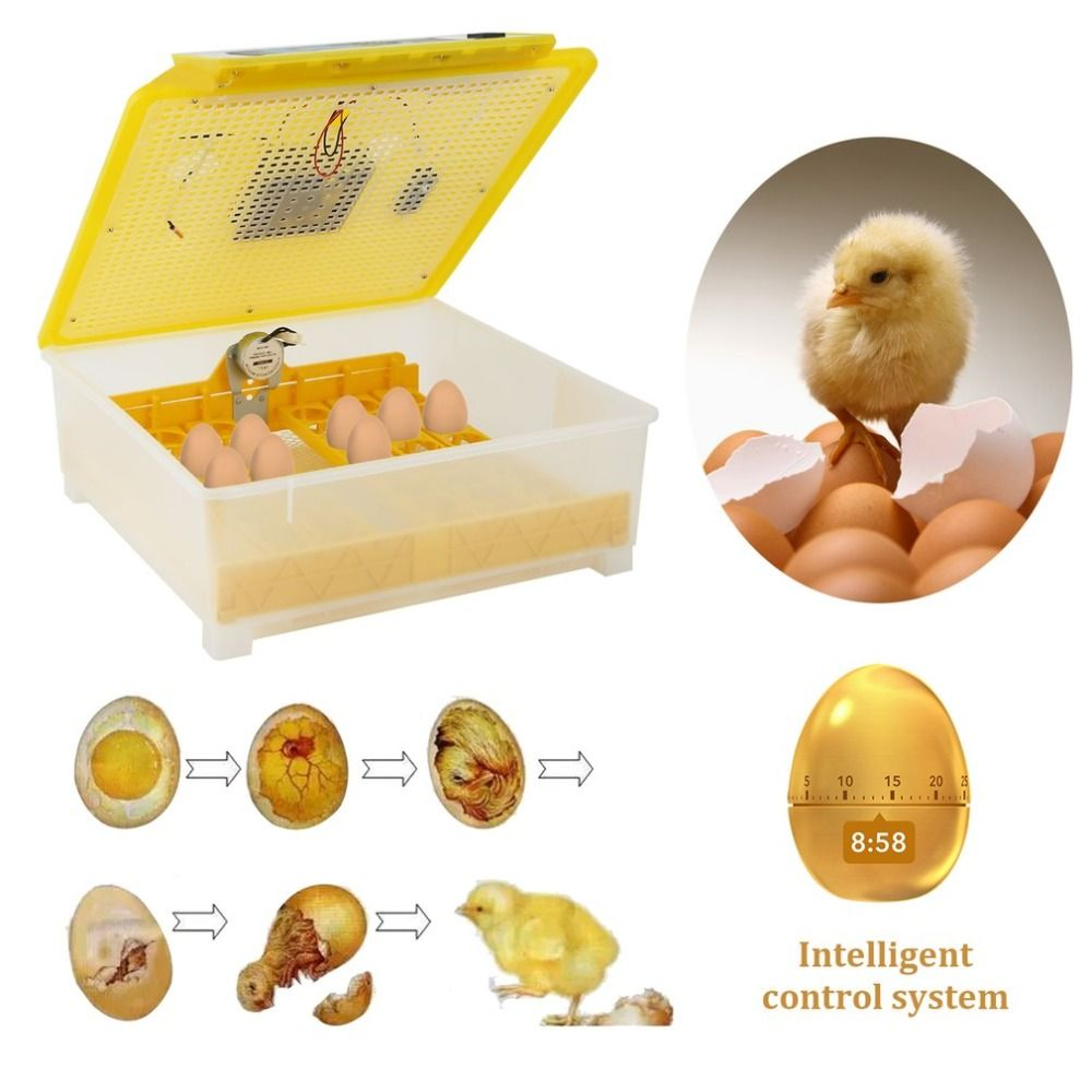 Automatic 48 Egg Turner Full Automatic Egg Incubator for Chicken with Digital Commercial Thermostat Control 80W