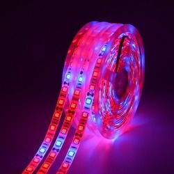LED crecer luz completa espectro 5 M led light 5050 LED flor planta Fito crecimiento lámparas de efecto invernadero hidropónico cultivo de plantas