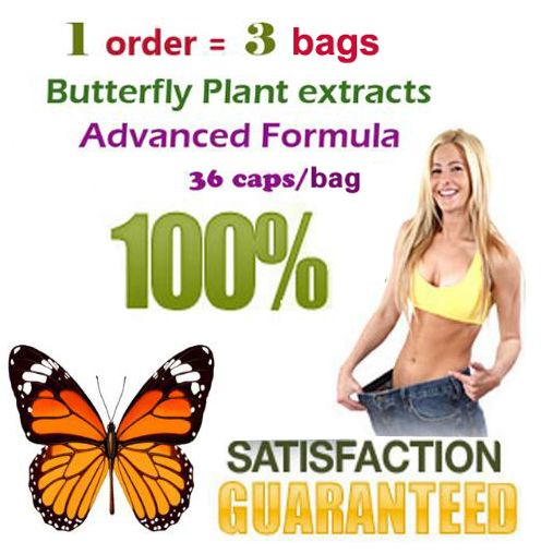 ( 3 bags) 100% effective advanced slimming Strong butterfly wild plant botanic extracts fat burning for 108 days supply