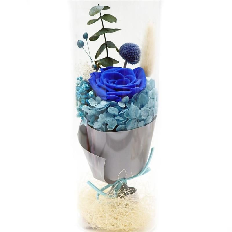 Wr Blue Red Eternal Flower LED Light Eternal Rose Flower Preserved Beauty Real Natural Fresh Red Roses Flowers Gifts