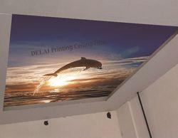 D-1013 dolphin jumpping off the sea Печать стрейч потолочные пленки новый водонепроницаемый материал украшения