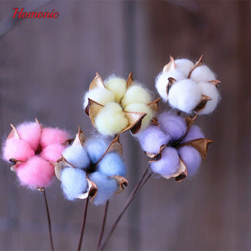 Natural dried cotton flower with Stem DIY Crafts homonic Decorative dried pressed flowers for Home Party Wedding Free Shipping