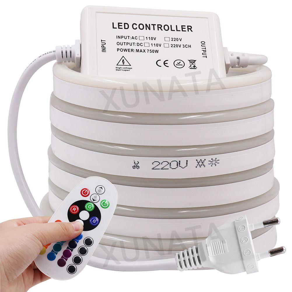 220 V Flex LED néon corde lumière RGB 1 m 5 m 10 m 25 m 50 m 100 m intérieur extérieur pour fête de vacances Valentine décor rouge bleu jaune blanc