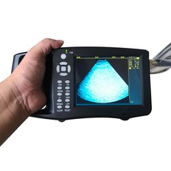 Portabel Babi Ultrasound Hewan Hewan Tes Kehamilan Instrumen Warna B Mode Ultrasonography Ultrasonik Detector