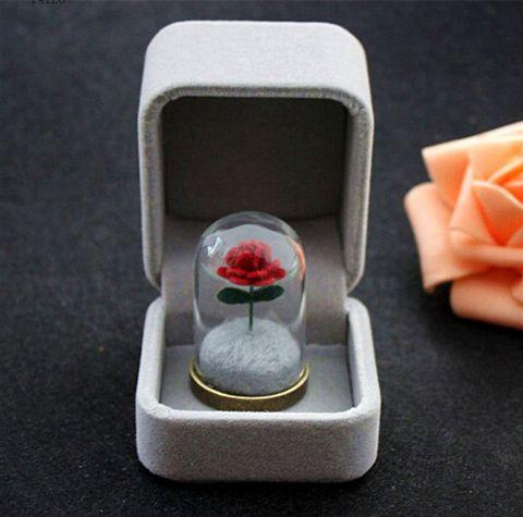1 PC petit Prince Rose/le petit prince/le petit Prince de collier Rose/Rose terrarium collier/ cadeau du Jour de Valentine
