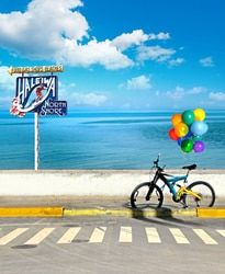 LIFE MAGIC BOX 150X200Cm Vinyl Backdrops For Photography Bicycle With Balloons Photo Background Cm-5495
