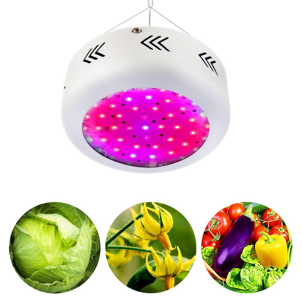 Led Anlage Wachsen Lampe 150W Led-leuchten Für Innen Wachsen Volles Specturm Led Indoor Growbox Für Pflanzen Samen Blume