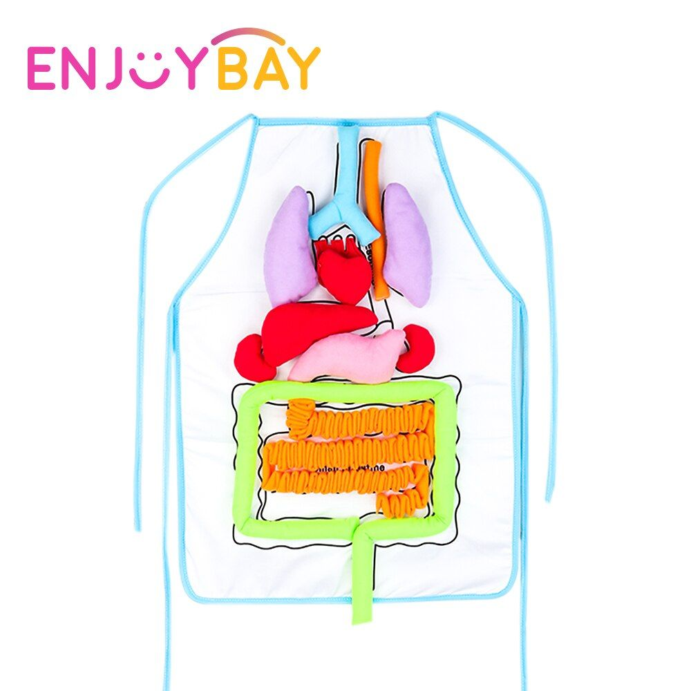 Enjoybay 3D Body Organ Plush Toy with Apron Viscera Teaching Utensil Body Organs Awareness Aids Early Educational Toy for Kid