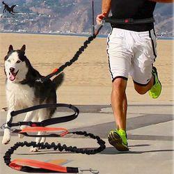 [Tailup] Perros Correa Correr elasticidad mano libremente Artículos para las mascotas Perros arnés collar jogging plomo y cintura ajustable cuerda cl153