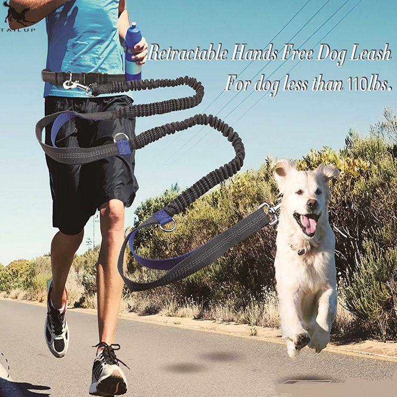 [TAILUP] chien de compagnie laisse de course corde with2 poignées DogJoging laisse de marche avec réfléchissant mains libres animaux de compagnie Double élasticité corde