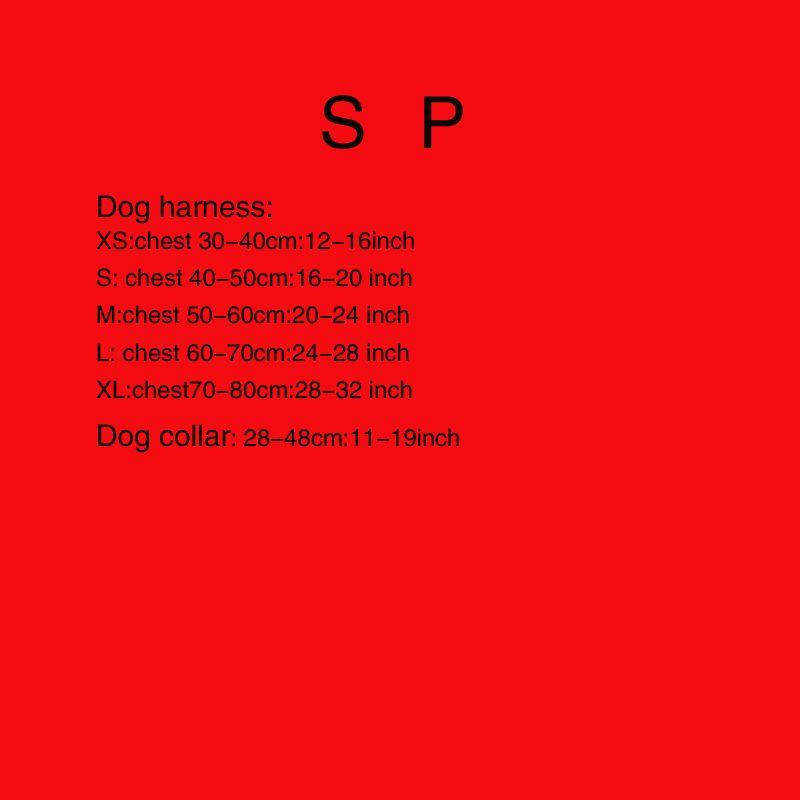1-4 jeux pour animaux 1 (harnais) 2 (harnais + laisse) 3 (harnais + laisse + collier) 4 (laisse + collier) 5 (collier) 6 (laisse)