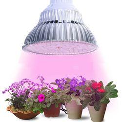 JIERNUO Grow Led Plant light LED Grow Light E27 6W 10W 18W 24W 48W 90W Plant Lamp Bulb for indoor flowering Hydroponic Plants