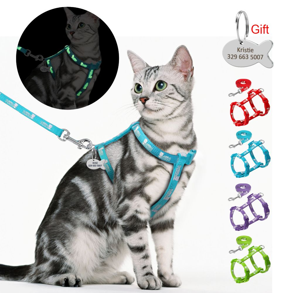 Nylon Cat Harness and Leash Set With Customized Id Tag Cats kitten Harnesses Anti Lost Name Tag Free Engraving Blue Red