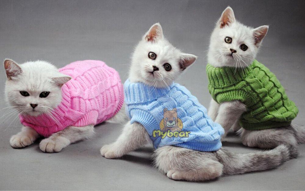 Nouveau chien chat pull Sphinx chat manteau spaghetti chaud automne hiver Pet Jumper chat vêtements pour petit chat chien animaux de compagnie